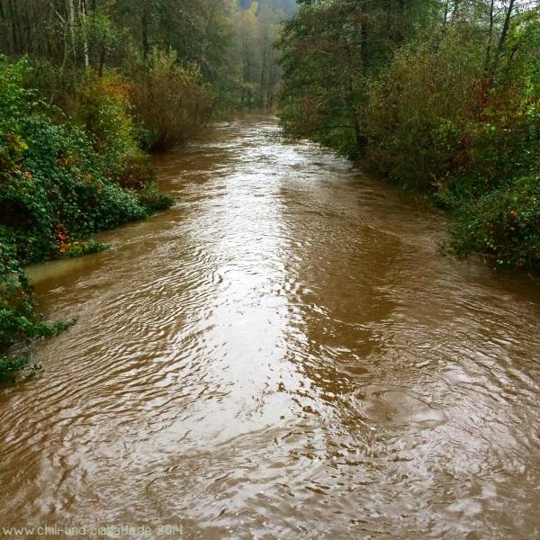Hochwasser Teisnach