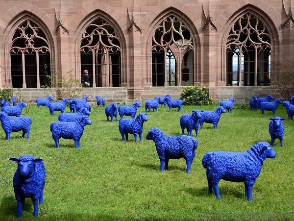 blaue Friedensherde Münster Basel
