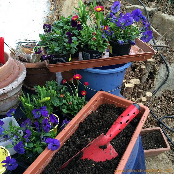 Frühjahrsbepflanzung