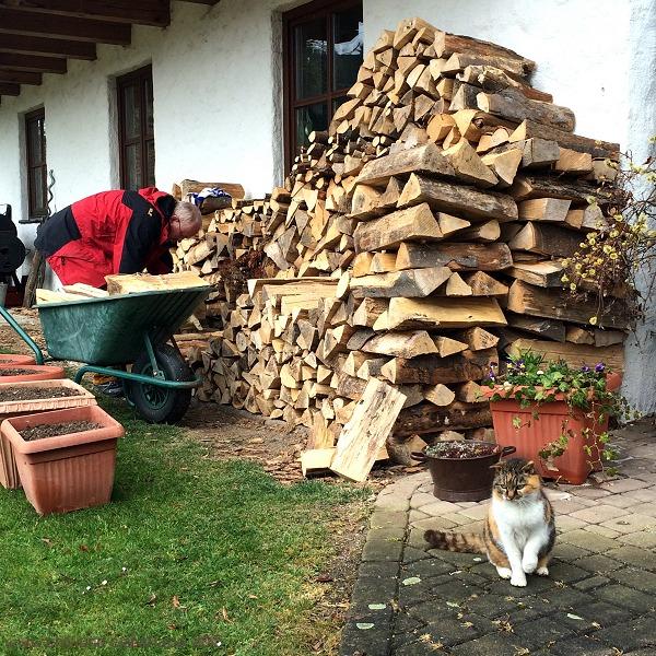 Holz schichten