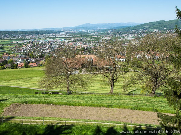 Blick auf Basel
