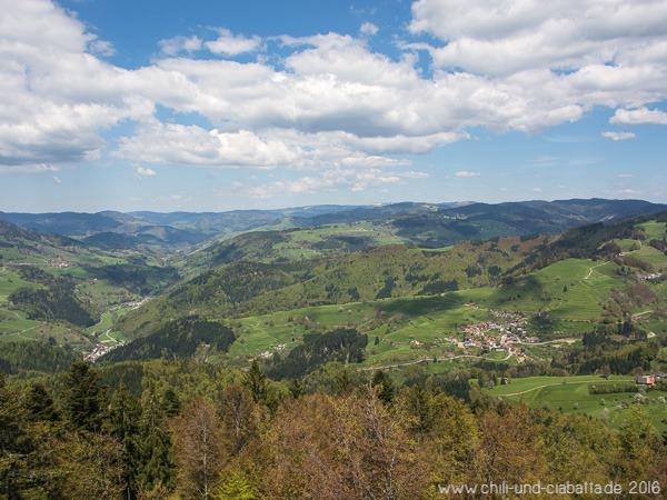 Hohe Möhr Powertrail, Ausblick Richtung Schwarzwald