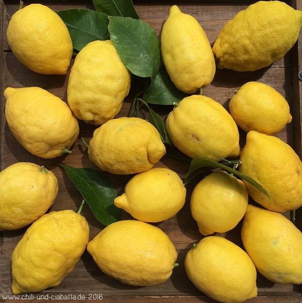 Amalfi-Zitronen