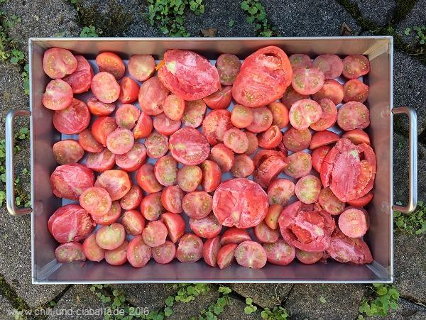 Tomaten vor dem Backofen