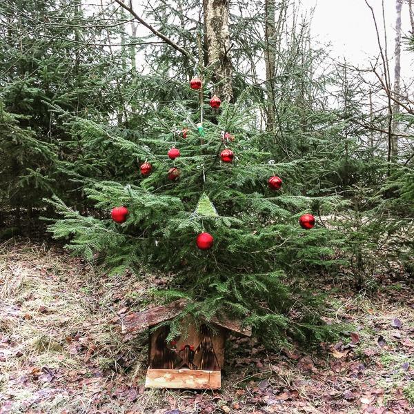 GC Weihnachtsbaum