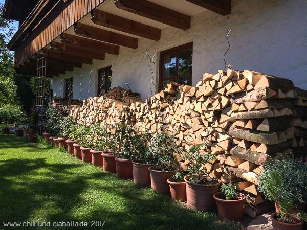 Holzvorräte