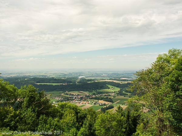 Blick vom Ulrichsberg