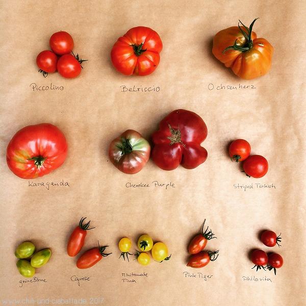 Tomatensorten 2017
