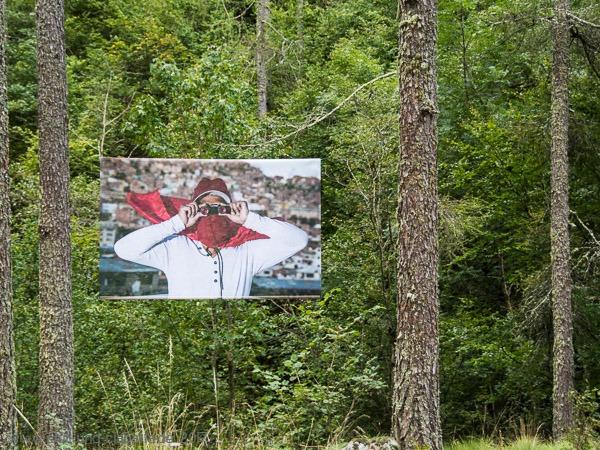 Fotoausstellung im Wald