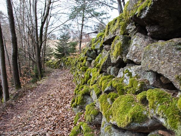 CW Mauer im Wald