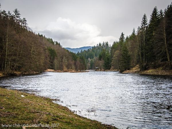 Regen bei Schönau