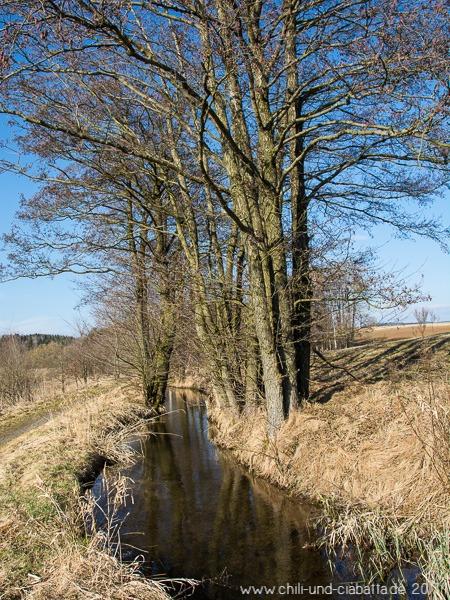 Kanal am Silbersee