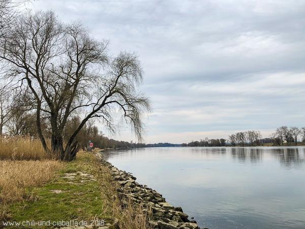 Wildnistour Donau