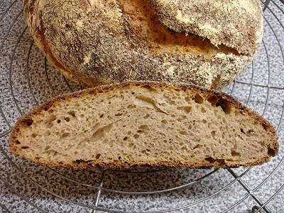No-knead bread mit Sauerteig und Roggenanteil