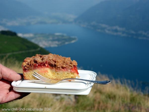 Plaumenkuchen mit Walsnuss-Streuseln