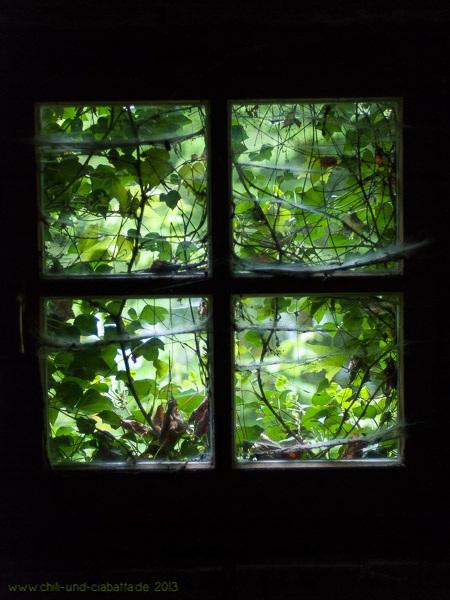 Lost Place Fensterausblick