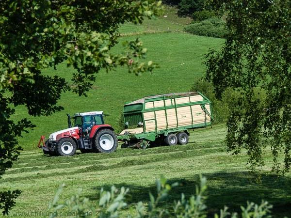 Traktor auf Wiese