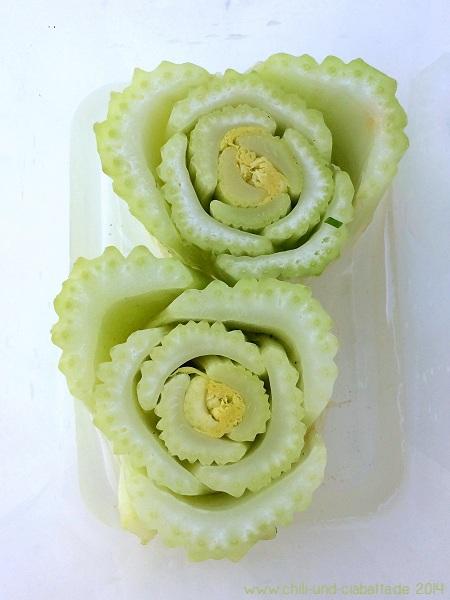 Versuch: how to regrow celery