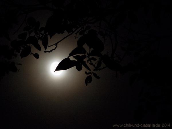 Mond hinter der Walnuss