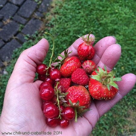 Handvoll Obst
