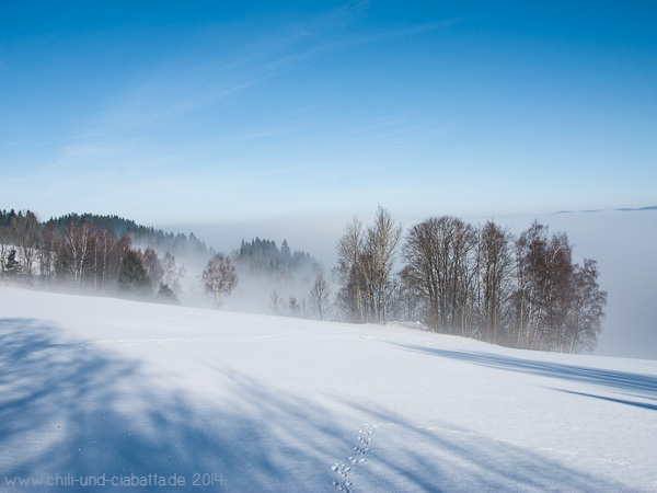 Dem Nebel entkommen