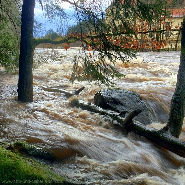 Hochwasser bei Marienthal