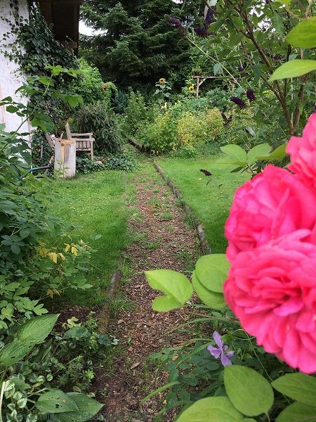 Gartenweg vorher