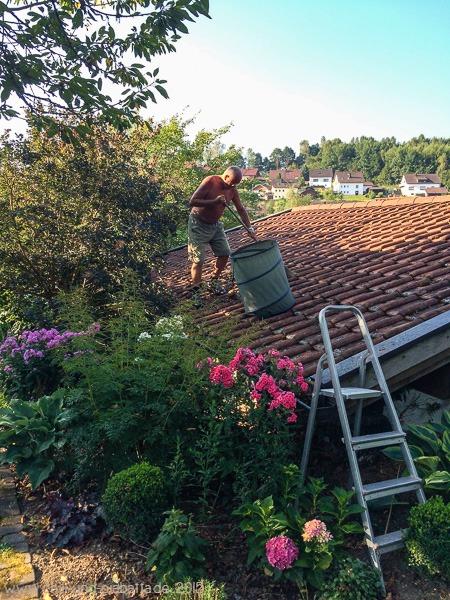 Dach säubern