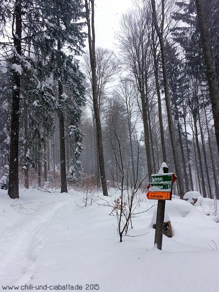 Schneeschuhtour 2 zum Bretterschachten