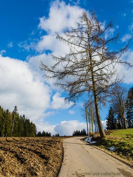 Rundweg über Waldkapellenweg