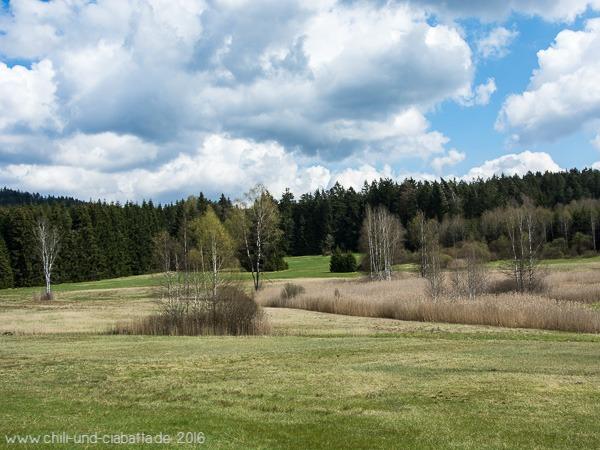 Stockerwiesen