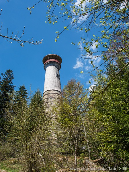 Hohe Möhr Powertrail, Turm in Sicht