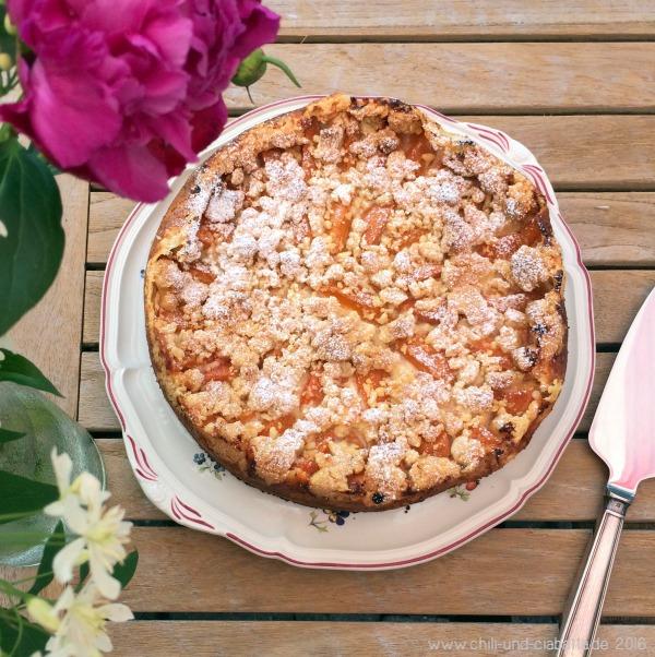 Aprikosenkuchen Dagmar