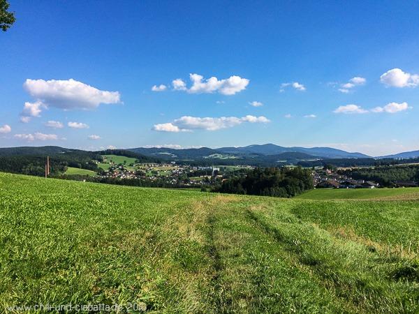Blick Richtung Teisnach