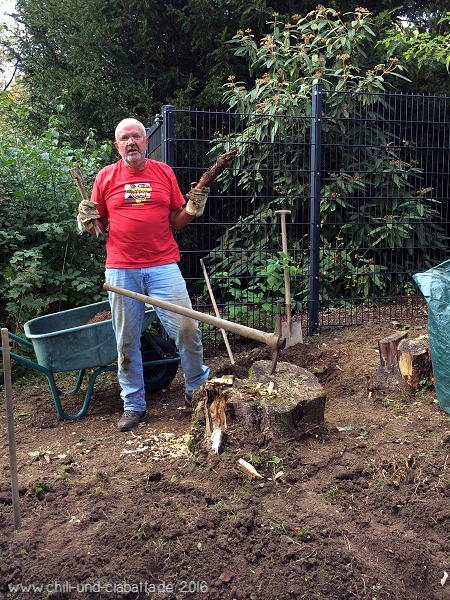 Pflanzlöcher graben