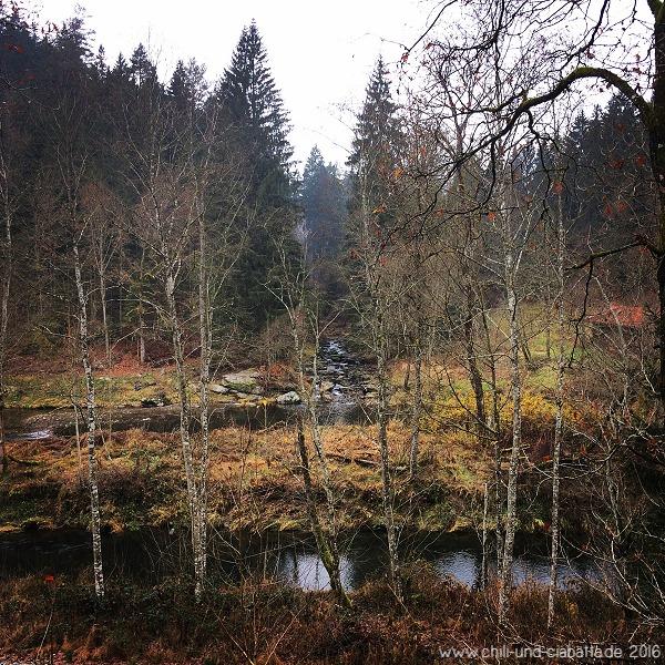 Spaziergang am Regen bei Gumpenried