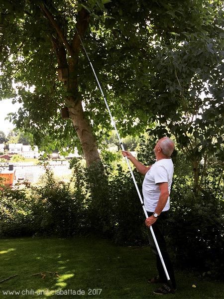 ECA Golfballangel