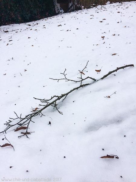 Zweig auf Schnee