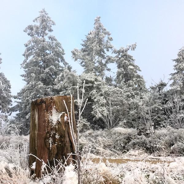 Winterlicher Geisskopf