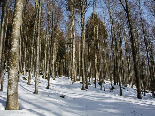 Schneebedeckter Weg