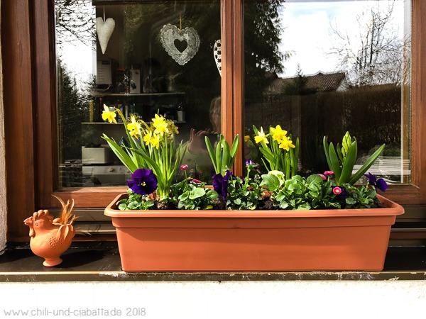 Frühlingskasten