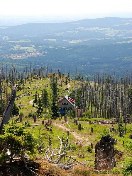 Großer Rachel - Blick aufs Waldschmidthaus
