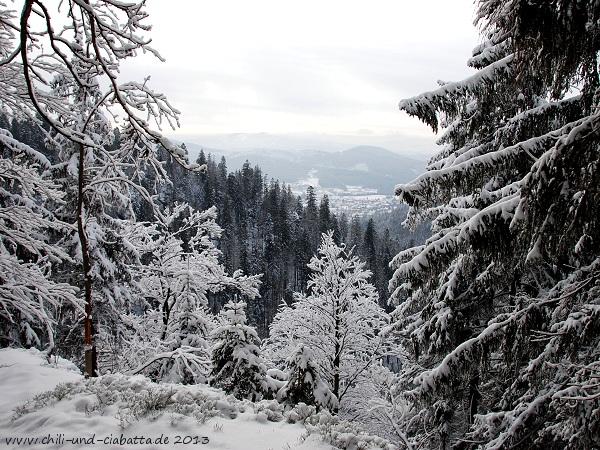 Schneeschuhtour Schweiklruhe