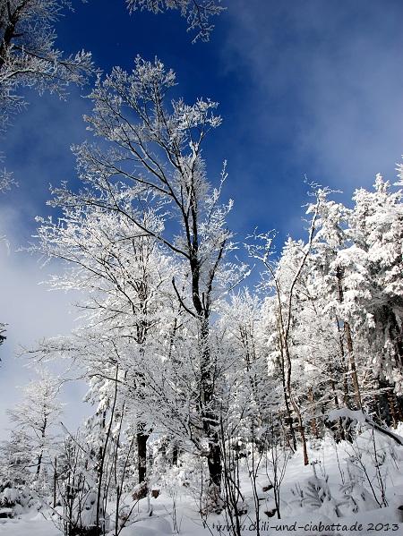 Schneeschuhtour GEHsundheitsweg