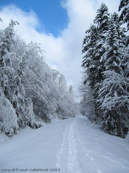 Schneeschuhtour Scheibe Lohhäusl