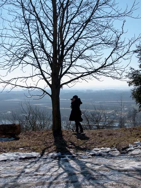 Blick von Bogenberg auf die Donau