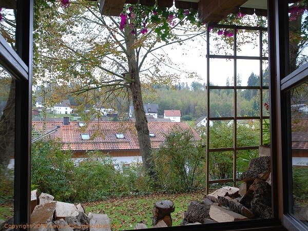 Blick aus meinem Küchenfenster