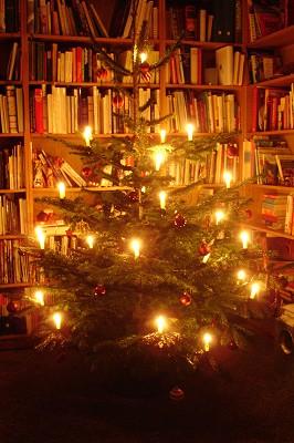 Weihnachtsbaum 2006